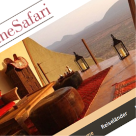 DaneSafari Webdesign